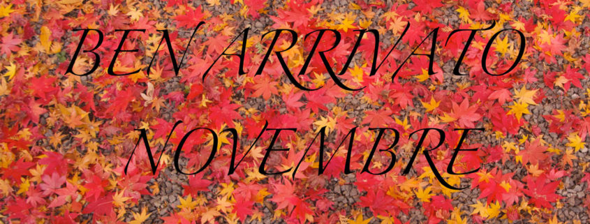 Ben-arrivato-Novembre da Ipermoda Factory